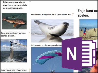 OneNote Water Project